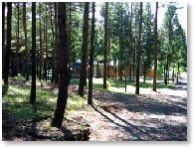 緑とのふれあいの森公園