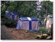 菖蒲高原キャンプ場