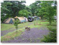わらび平森林公園キャンプ場