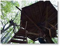 ツリーハウスにチャレンジ「森のくらしの郷」