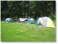 こだまの森キャンプ場