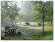 南信州ふるさと村自然園せいなの森キャンプ場
