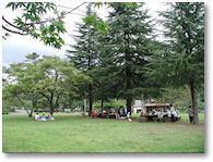 岩倉ファームパークキャンプ場(岩倉温泉キャンプ場)