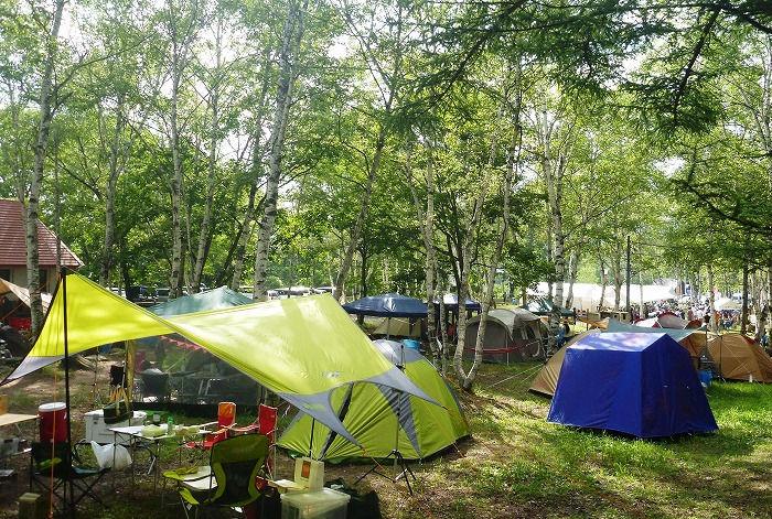 水上 宝台樹キャンプ場