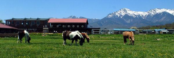 滝沢牧場キャンプ場